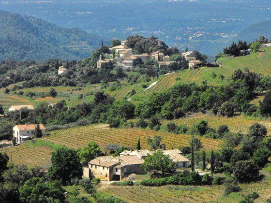 Bild 13 - Provence Ferienwohnung Joncas - Objekt 2051-6