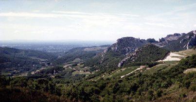 Bild 7 - Provence Ferienwohnung Joncas - Objekt 2051-6