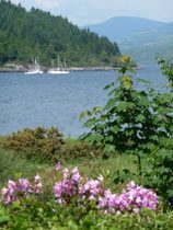 Ferienhaus Schottland - Loch Long
