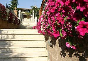 Bild 19 - Ferienwohnung Tortoreto Alto - Ref.: 150178-53 - Objekt 150178-53