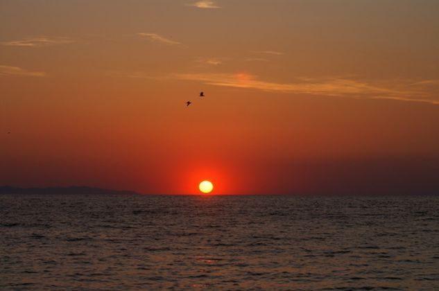 Bild 11 - Ferienwohnung direkt am Meer, Insel Elba - Objekt 151555-1
