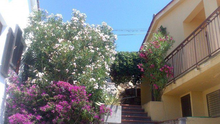 Ferienhaus Elba mit Wandergegend