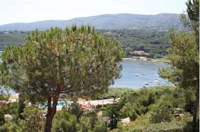 Insel Elba Appartment in Anlage mit Pool Porto Azzuro