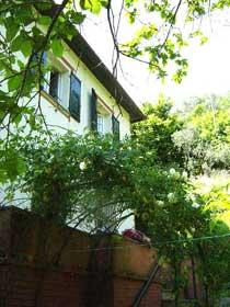 Bild 22 - Ligurien Ferienhaus 21761-3 - Objekt 21761-3