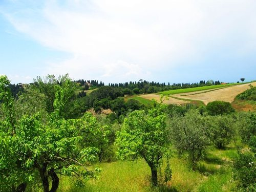 Bild 29 - Ferienwohnung Empoli - Ref.: 150178-1263 - Objekt 150178-1263