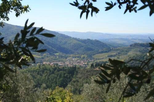 Bild 17 - Ferienwohnung Greve in Chianti - Ref.: 150178-491 - Objekt 150178-491