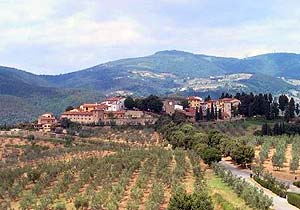 Bild 7 - Ferienwohnung Carmignano - Ref.: 150178-82 - Objekt 150178-82