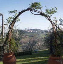 Bild 6 - Toskana Landgut Paterno nahe S.Gimignano Rif 400 - Objekt 1458-10