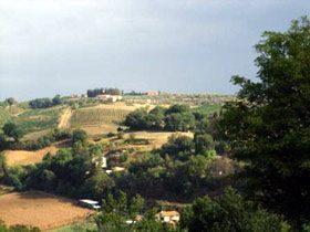 Bild 11 - Toskana Siena Landgut Poggio Alla Fame - Objekt 1458-11