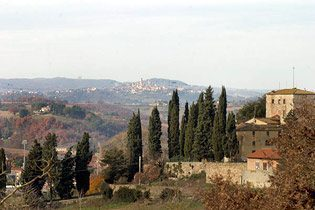 Bild 20 - Toskana Colle Val d`Elsa Weingut Belvedere - RI... - Objekt 1458-15