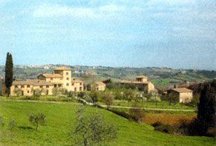 Bild 9 - Toskana Poggibonsi Fattoria Piecorto - RIF 1200 - Objekt 1458-19