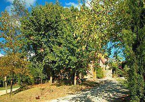 Bild 7 - Ferienwohnung Foiano della Chiana - Ref.: 15017... - Objekt 150178-111