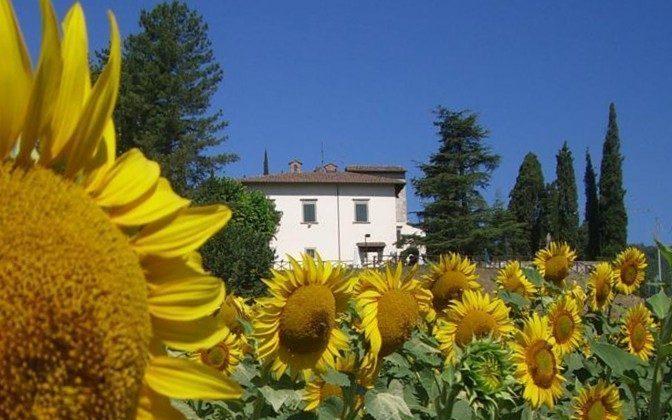 Hausansicht von Garten Toskana Sansepolcro Villa Ref. 162283-1