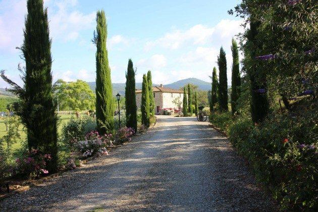 Zufahrt Toskana Arezzo Luxus- Ferienhaus Ref. 162283-2