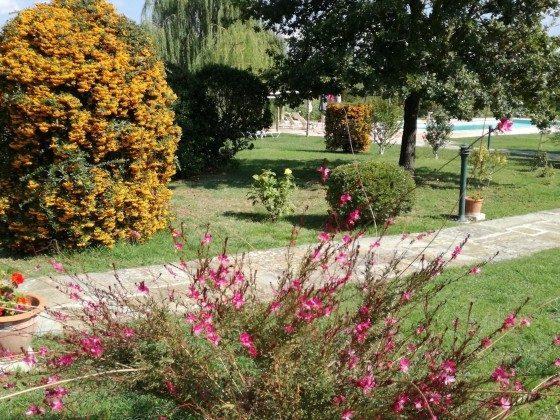 Bild 21 - Toskana Agriturismo Ferienwohnung Giovanna Ref.... - Objekt 10644-1