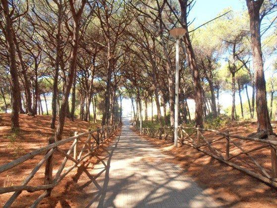Bild 11 - Toscana Cecina Marina Ferienwohnung  Ref 30612-2 - Objekt 30612-2