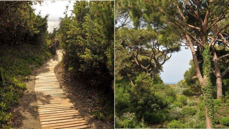 Weg zum Strand Bolgheri Ferienwohnung Ref. 22649-13