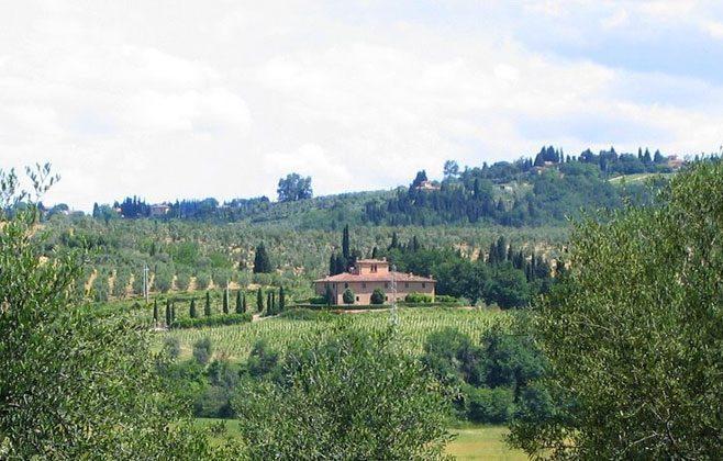 Das Ferienhaus von gegenüber mit dem Rebberg und den OLivenbäumen