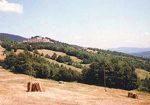 Bild 2 - Ferienhaus Montieri - Ref.: 150178-1005 - Objekt 150178-1005