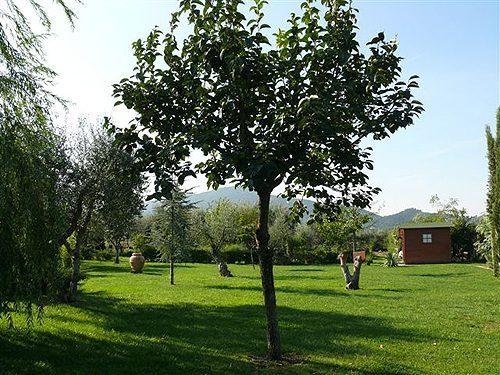 Bild 4 - Ferienhaus Scarlino - Ref.: 150178-245 - Objekt 150178-245