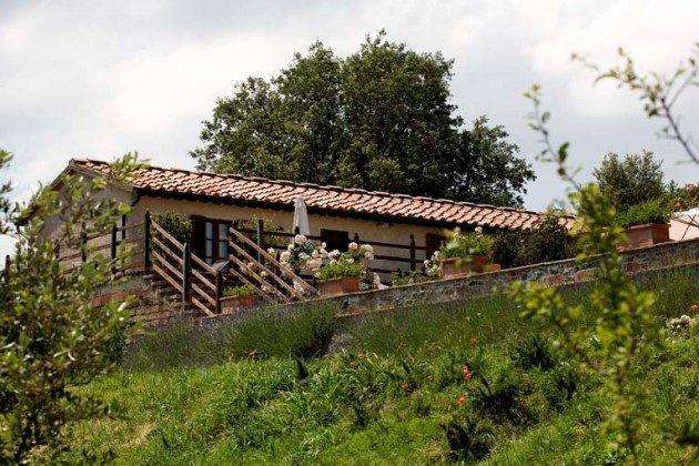 Terrassen Ciliegiolo und IL Mammolo  Toskana Ferienwohnungen auf Weingut Ref. 1892