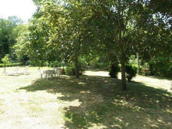 Schattenspendende Bäume vorm Haus