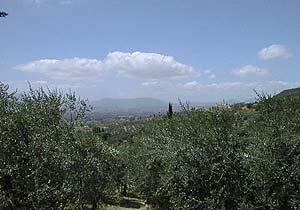 Bild 2 - Ferienhaus San Gennaro - Ref.: 150178-1001 - Objekt 150178-1001