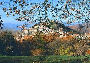 Bild 6 - Ferienhaus Montefegatesi - Ref.: 150178-1006 - Objekt 150178-1006