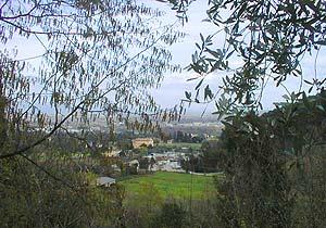 Bild 3 - Ferienhaus San Cerbone - Ref.: 150178-1007 - Objekt 150178-1007