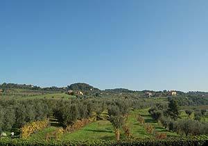 Bild 3 - Ferienwohnung Montecarlo - Ref.: 150178-1091 - Objekt 150178-1091