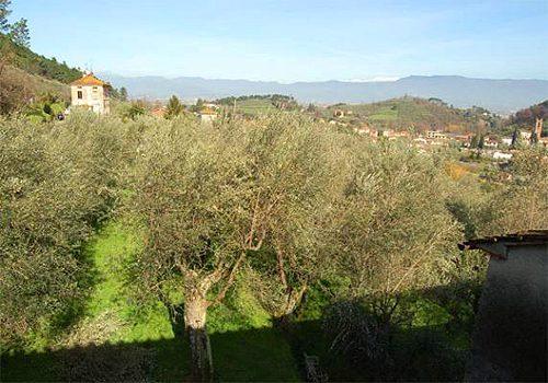 Bild 6 - Ferienhaus Capannori - Ref.: 150178-1152 - Objekt 150178-1152