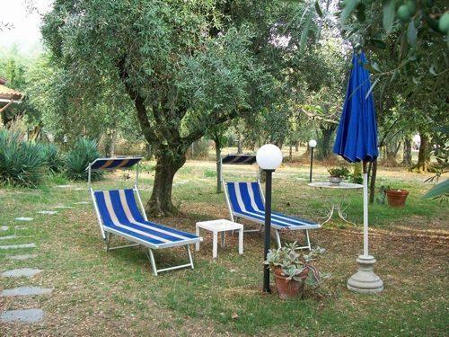 Bild 17 - Ferienwohnung Lucca - Ref.: 150178-1253 - Objekt 150178-1253