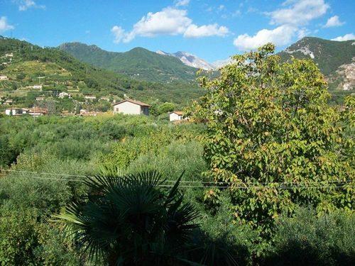 Bild 19 - Ferienwohnung Lucca - Ref.: 150178-1253 - Objekt 150178-1253