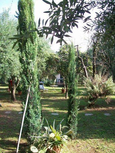 Bild 26 - Ferienwohnung Lucca - Ref.: 150178-1253 - Objekt 150178-1253