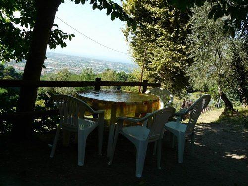 Bild 17 - Ferienwohnung Camaiore - Ref.: 150178-1261 - Objekt 150178-1261