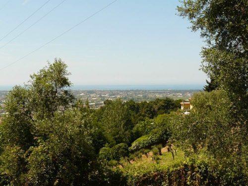 Bild 21 - Ferienwohnung Camaiore - Ref.: 150178-1261 - Objekt 150178-1261