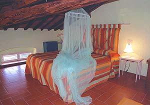 Bild 11 - Ferienhaus San Quirico di Moriano - Ref.: 15017... - Objekt 150178-998