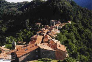 Bild 10 - Toskana Ferienwohnung Casa Mario - Objekt 7104-1