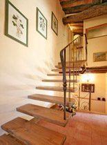 Bild 12 - Toskana San Martino in Freddana Ferienhaus Colo... - Objekt 94957-2