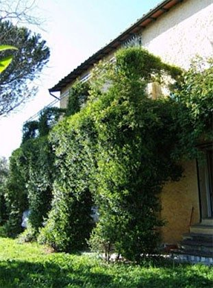 Aussen Toskana Ferienhaus 21761-4