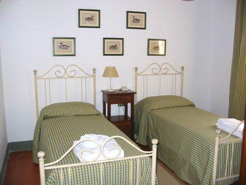 Bild 24 - Ferienhaus Montopoli in Val d`Arno - Ref.: 1501... - Objekt 150178-498