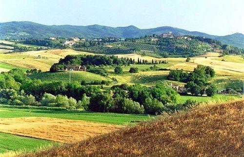 Bild 20 - Ferienwohnung Montelopio - Ref.: 150178-71 - Objekt 150178-71
