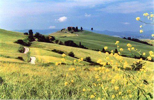 Bild 14 - Ferienwohnung Montelopio - Ref.: 150178-72 - Objekt 150178-72