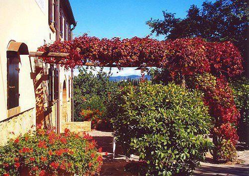 Bild 4 - Ferienwohnung Montelopio - Ref.: 150178-73 - Objekt 150178-73