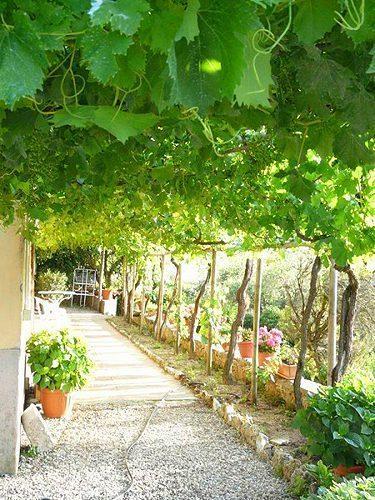 Bild 14 - Ferienwohnung Vagliagli - Ref.: 150178-233 - Objekt 150178-233