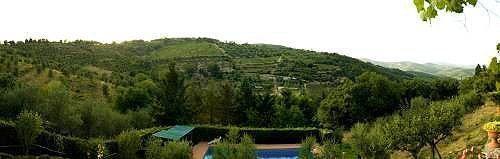 Bild 9 - Ferienwohnung Vagliagli - Ref.: 150178-233 - Objekt 150178-233