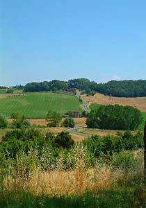 Bild 12 - Ferienwohnung Torrita di Siena - Ref.: 150178-55 - Objekt 150178-55