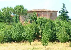 Bild 13 - Ferienwohnung Torrita di Siena - Ref.: 150178-55 - Objekt 150178-55