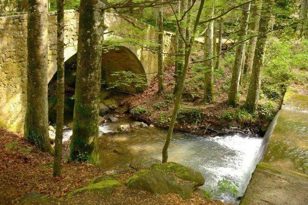 Toskana Ferienhaus 22649-7 - Fluss