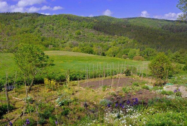 Toskana Ferienhaus 22649-7 - Garten
